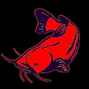 Contact, Lake Texoma Catfish Guide