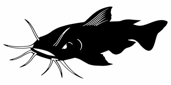 Lake Texoma Guided Fishing Trips, Lake Texoma Catfish