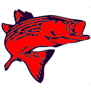 Lake Texoma Catfish Guides, Lake Texoma Striper Fishing