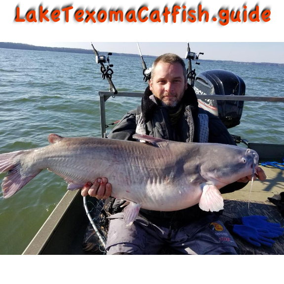 Catching blue catfish lake texoma catfish guide for How to fish for catfish in a lake